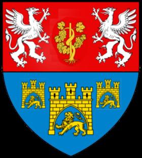 Vigne d'or Saint-Jean-d-Ardieres